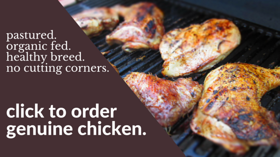 Order pastured, healthy breed, organically raised chicken in New Hampshire