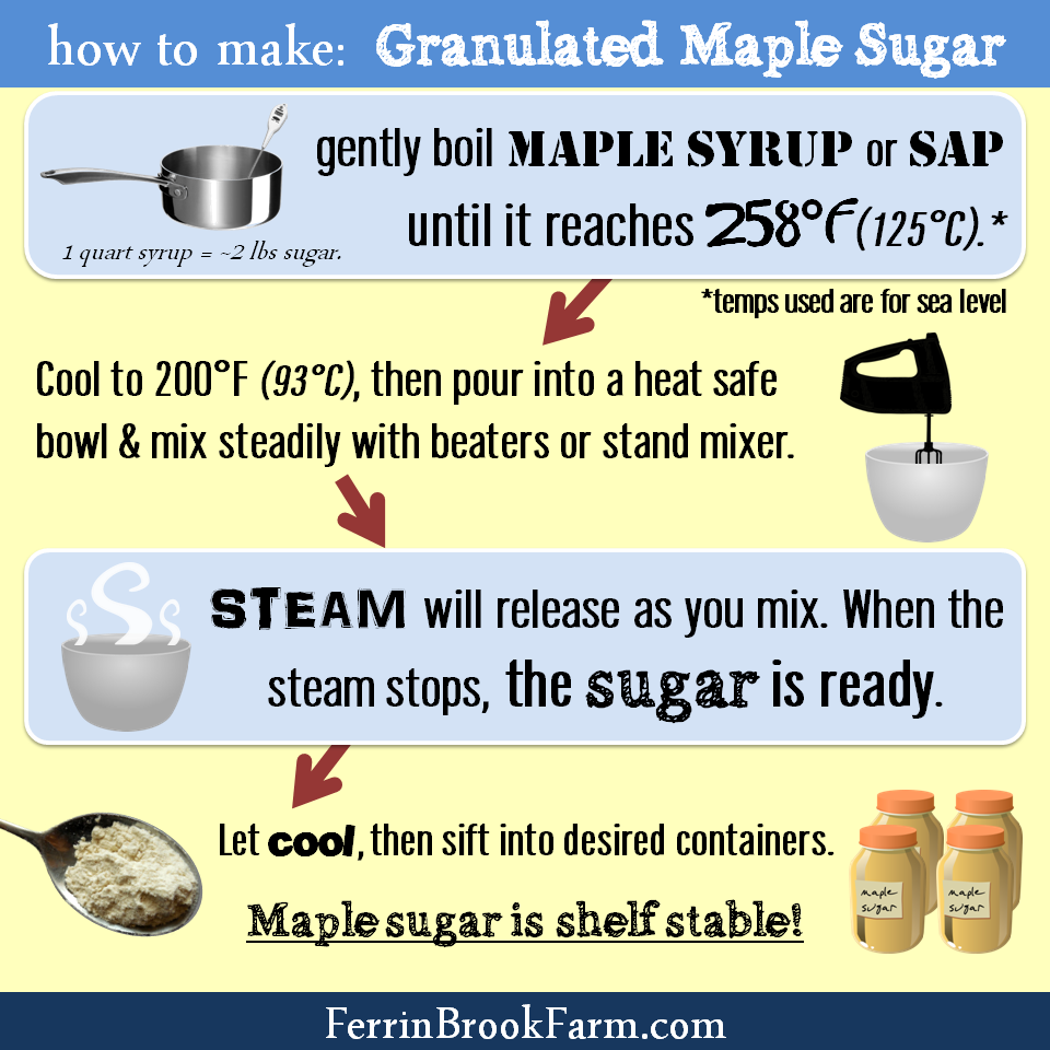 How to Make Granulated Maple Sugar at home infographic