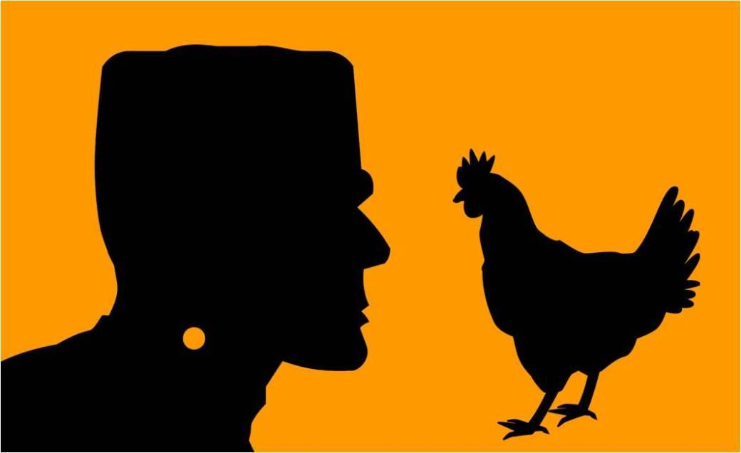 frankenstein's chicken
