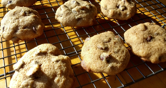 chocolate chip cookies made with maple syrup instead of granulated cane sugar